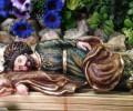 Thánh Giuse bổn mạng người ngủ