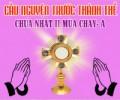 Cầu nguyện trước Thánh Thể- Ngày 08.03.2020 – Chúa nhật II mùa Chay – Mt 17,1-9
