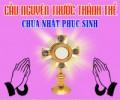 Cầu nguyện trước Thánh Thể- Ngày 12.04.2020 – Chúa nhật Phục sinh – Ga 20,1-9